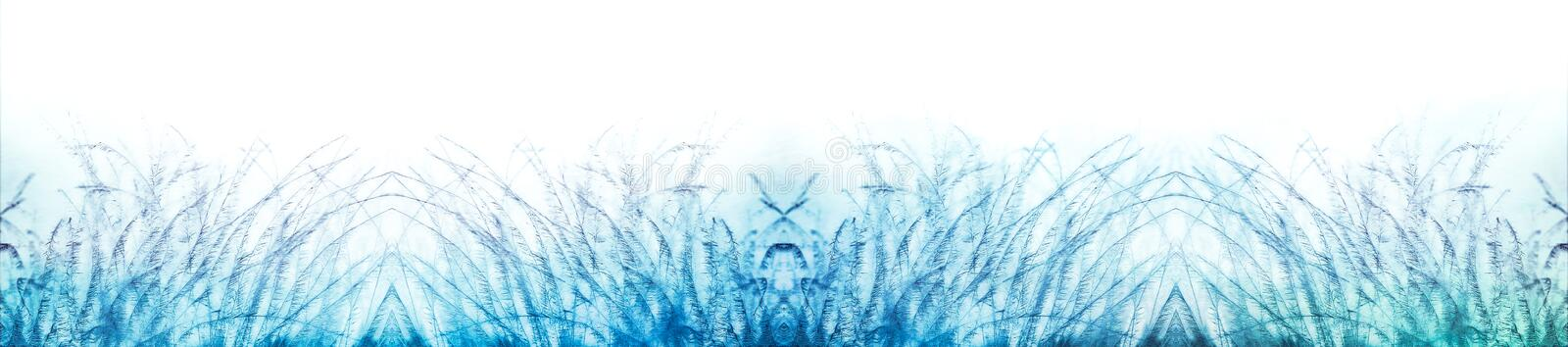 Pantone Turquoise Feathers on White Background Banner royalty free stock photo