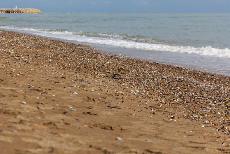 Pantoufles isolées et perdues de plage par la mer photo libre de droits