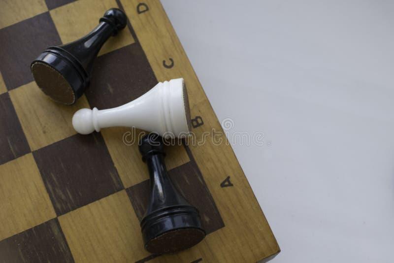 Pantsätter på träschackbräde Utrymme för text royaltyfria foton