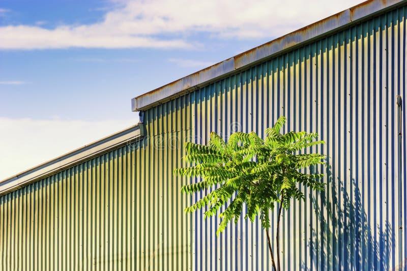 Panwiowa metal jata z samotnym drzewem w przedpolu fotografia stock