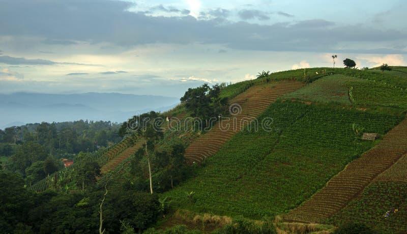 Panyaweuyan. Argapura, West Java - Indonesia royalty free stock image