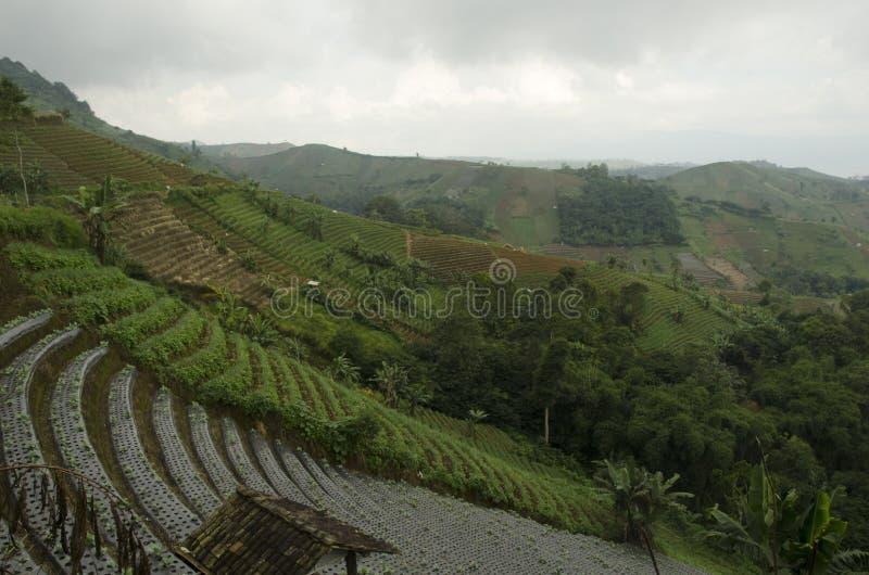 Panyaweuyan Argapura. West Java - Indonesia stock photo