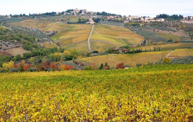 Panzano y colores del otoño en el campo de Chianti fotografía de archivo