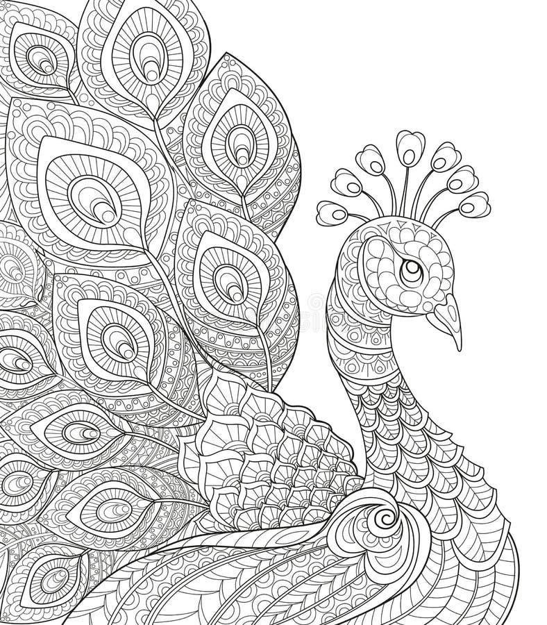 Paon Page antistress adulte de coloration Griffonnage tiré par la main noir et blanc pour livre de coloriage illustration stock