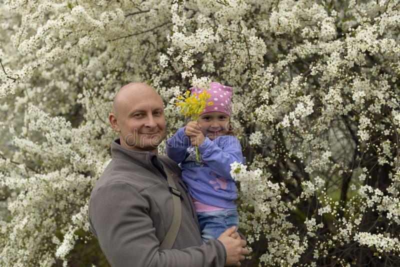 Papà con una piccola figlia nelle sue armi che stanno vicino ad un albero di fioritura in primavera immagine stock libera da diritti