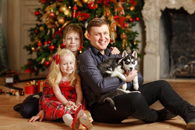 Papà, derivato e figlio con i cuccioli del husky al Natale che si siede sopra immagine stock