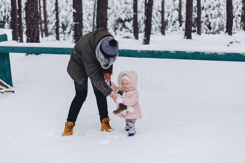 Papa die met snow-covered pijnboombos lopen stock fotografie