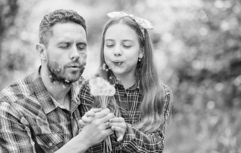 Papa et fille rassemblant des fleurs de pissenlit Gardez les allergies de ruiner votre vie Concept saisonnier d'allergies photos libres de droits