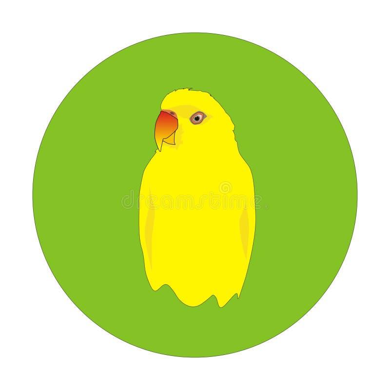 Papagaio amarelo ilustração royalty free