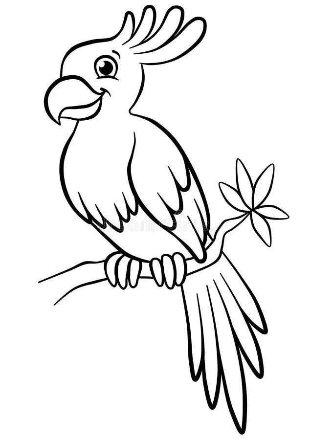 Papagaio bonito que senta-se na árvore florescida na floresta ilustração royalty free