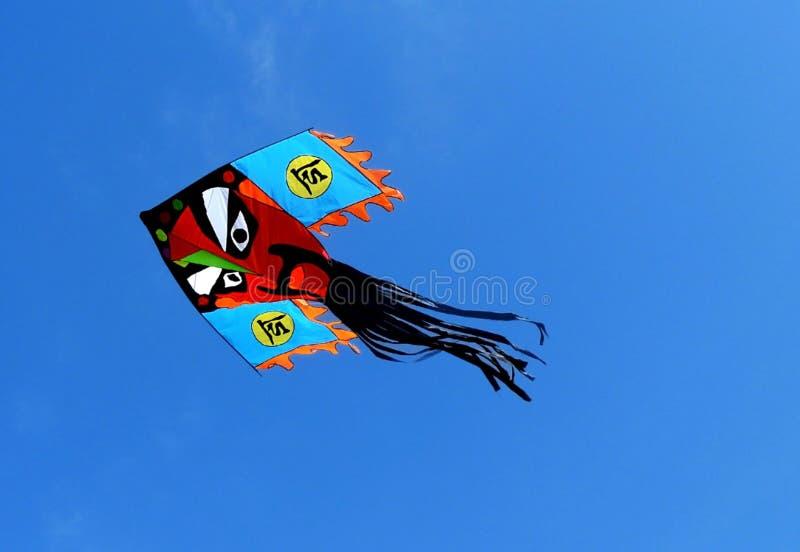 Papagaio chinês imagens de stock royalty free