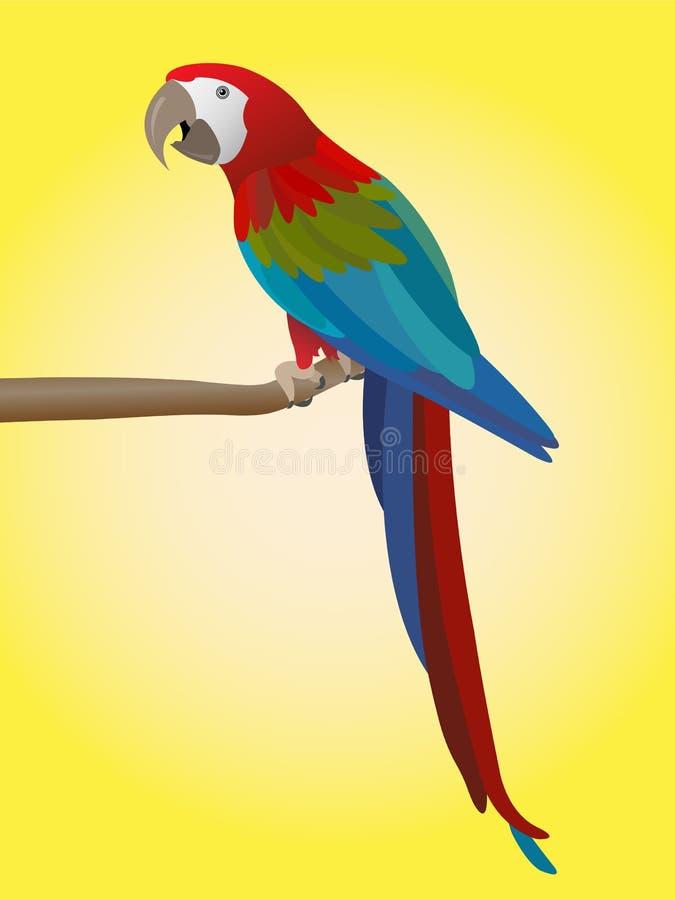 Papagaio colorido ilustração royalty free