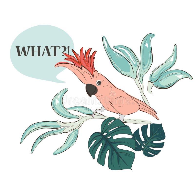 Papagaio colorido com as folhas desenhados à mão tipográficas das citações e da selva Ilustração moderna do paraíso com pássaro,  ilustração stock