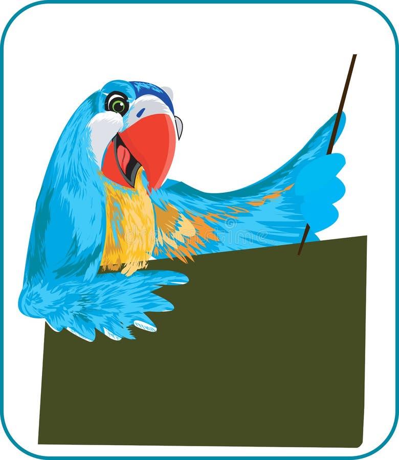 Papagaio como o professor ilustração royalty free