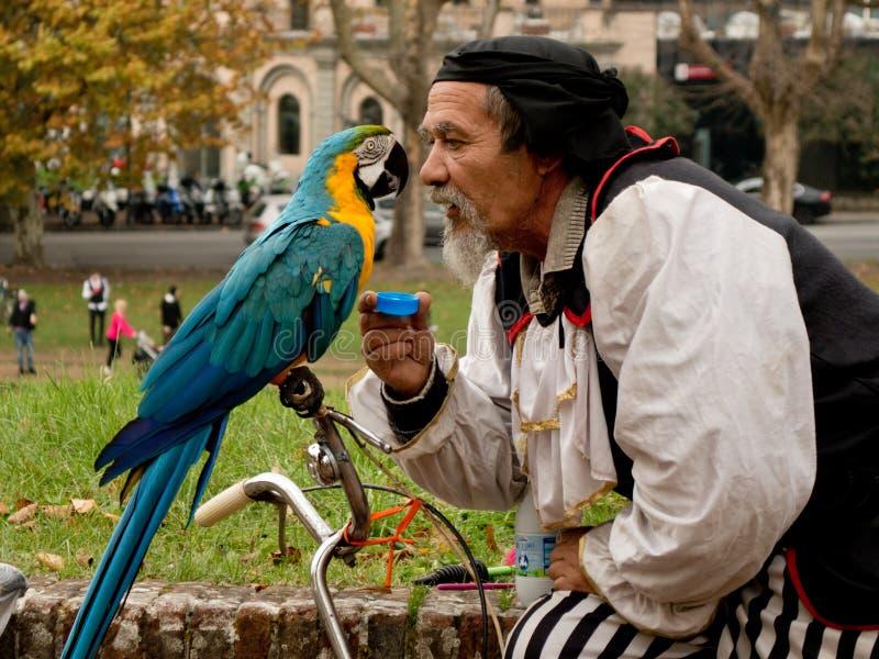 Papagaio curioso na banda desenhada de Lucca e nos jogos 2017 imagens de stock royalty free