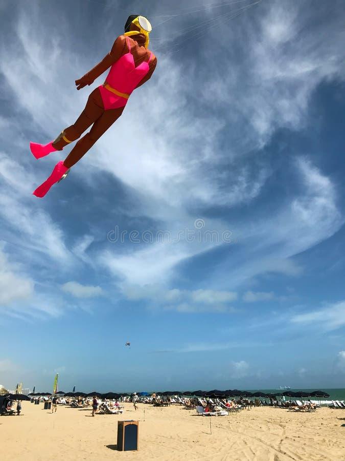 Papagaio dado forma como a praia fêmea de Flies Above Florida do mergulhador de mergulhador fotos de stock royalty free