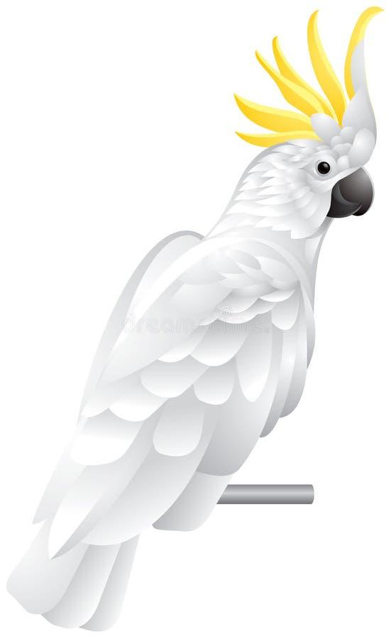 Papagaio de Cockatoo ilustração do vetor