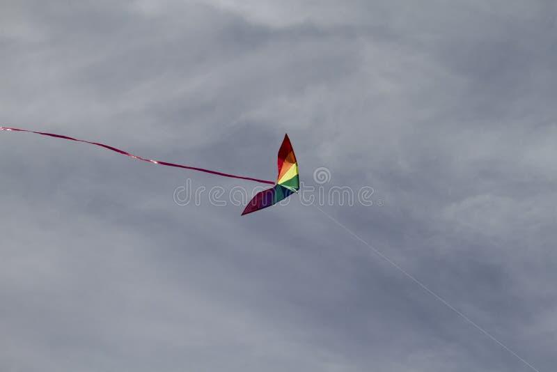Papagaio de cores do arco-íris em um céu azul com as nuvens brancas claras fotos de stock