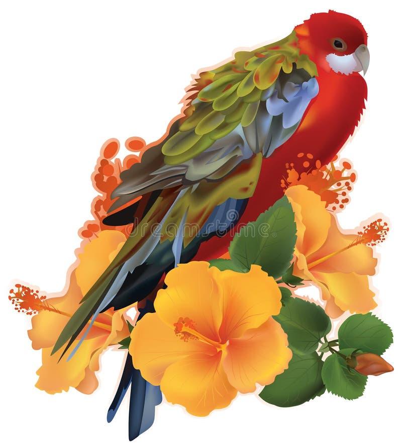 Papagaio e flores tropicais amarelas ilustração royalty free