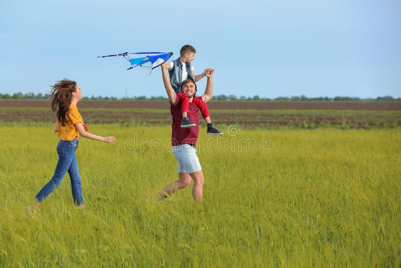 Papagaio feliz do voo da família no campo fotos de stock