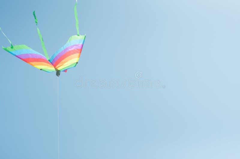 Papagaio listrado colorido brilhante no céu imagens de stock royalty free
