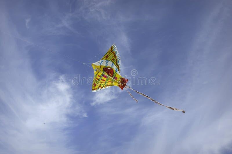 Papagaio no céu fotografia de stock