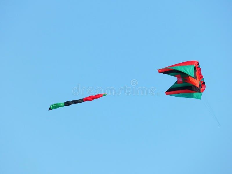 Papagaio no vôo imagem de stock