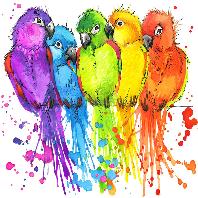 Papagaios coloridos engraçados com o respingo da aquarela textured ilustração do vetor
