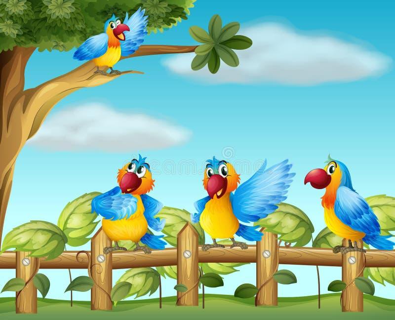 Papagaios coloridos no jardim cercado ilustração stock