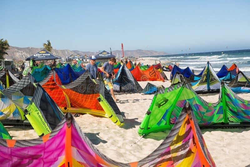 Papagaios coloridos que alinham na praia em México imagem de stock royalty free