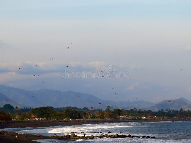 Papagaios da praia de Bali imagem de stock royalty free