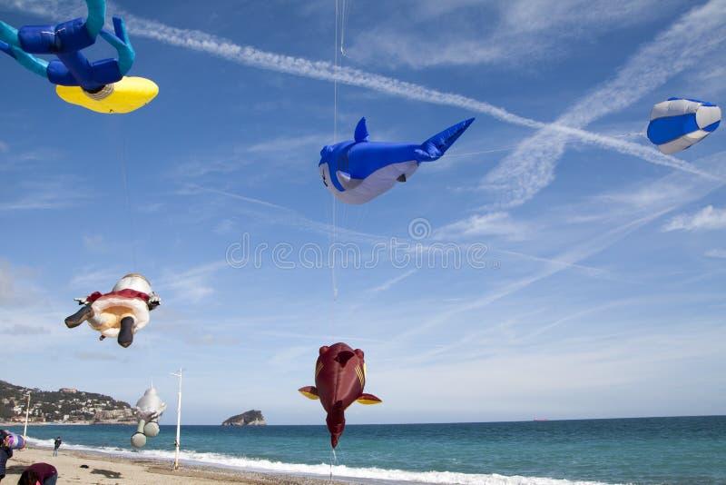 Papagaios de voo em riviera ligurian, spotorno imagens de stock royalty free