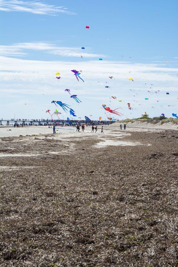 Papagaios do voo em Adelaide International Kite Festival fotos de stock