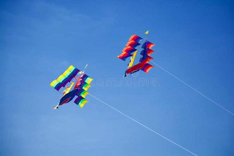 Papagaios do voo em Bali imagens de stock