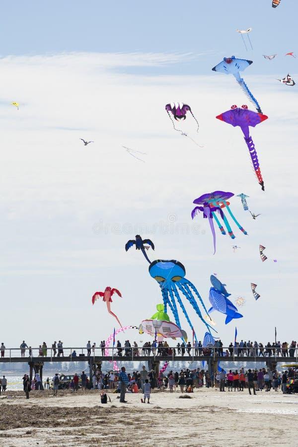 Papagaios do voo sobre o molhe em Adelaide International Kite F fotografia de stock