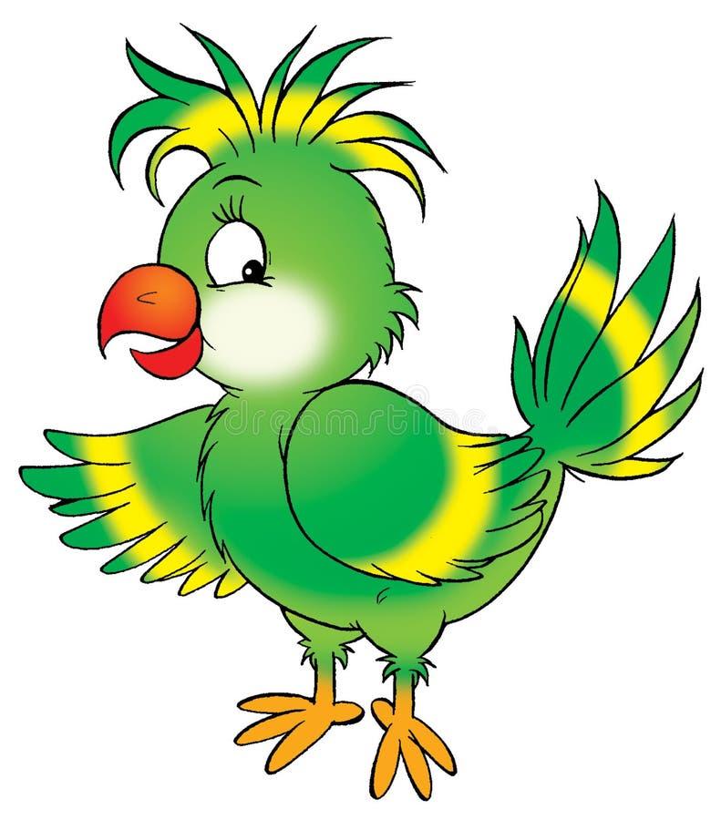 Papagei vektor abbildung