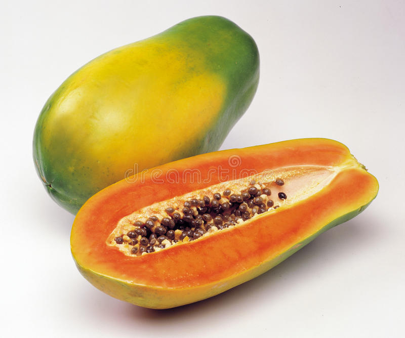 Papaia fotografia de stock