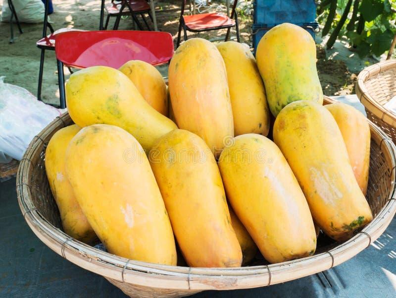 Papaia madura fotos de stock