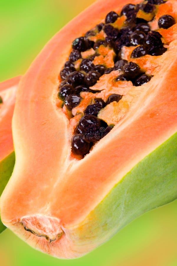 papaja obraz stock