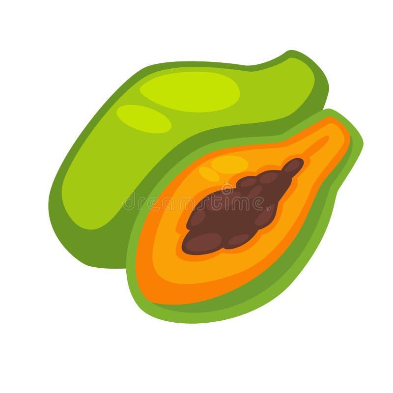Papaja Eetbaar Exotisch die Fruit op Wit wordt geïsoleerd vector illustratie
