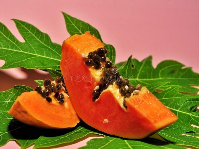 Papajafruit op roze achtergrond wordt ge?soleerd die royalty-vrije stock afbeelding