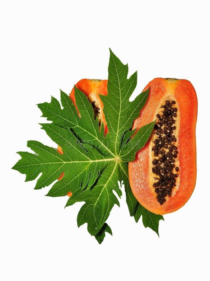 Papajafruit op witte achtergrond wordt ge?soleerd die royalty-vrije stock foto