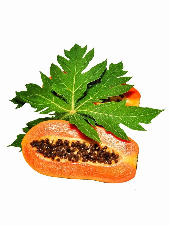 Papajafruit op witte achtergrond wordt ge?soleerd die royalty-vrije stock afbeelding
