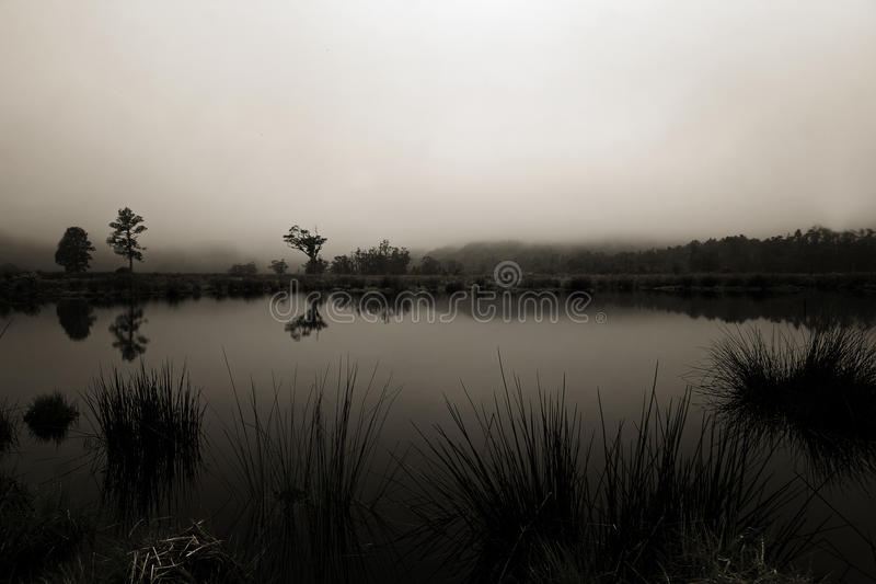 Paparoa National Park New Zealand stock photo