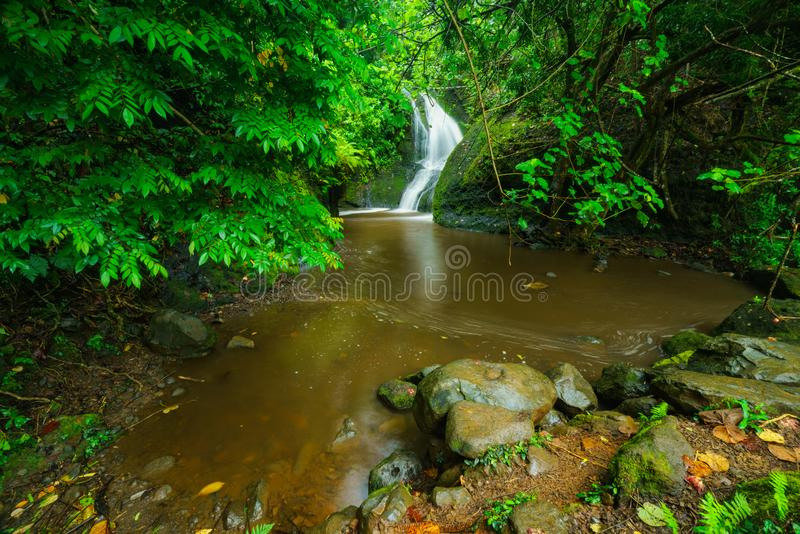 Papau Wigmore`s waterfall in the Cook Islands stock photos