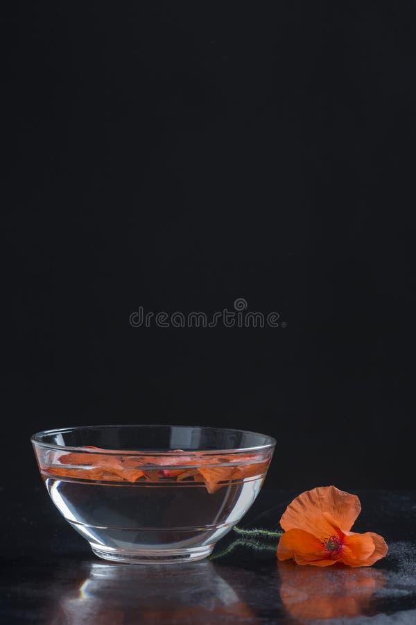 Papaver in glaskop stock afbeelding