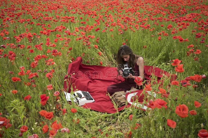 Papaver, Herinnering of Anzac Day royalty-vrije stock foto's