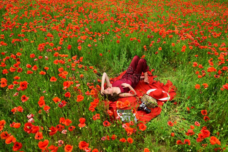 Papaver, Herinnering of Anzac Day stock foto's