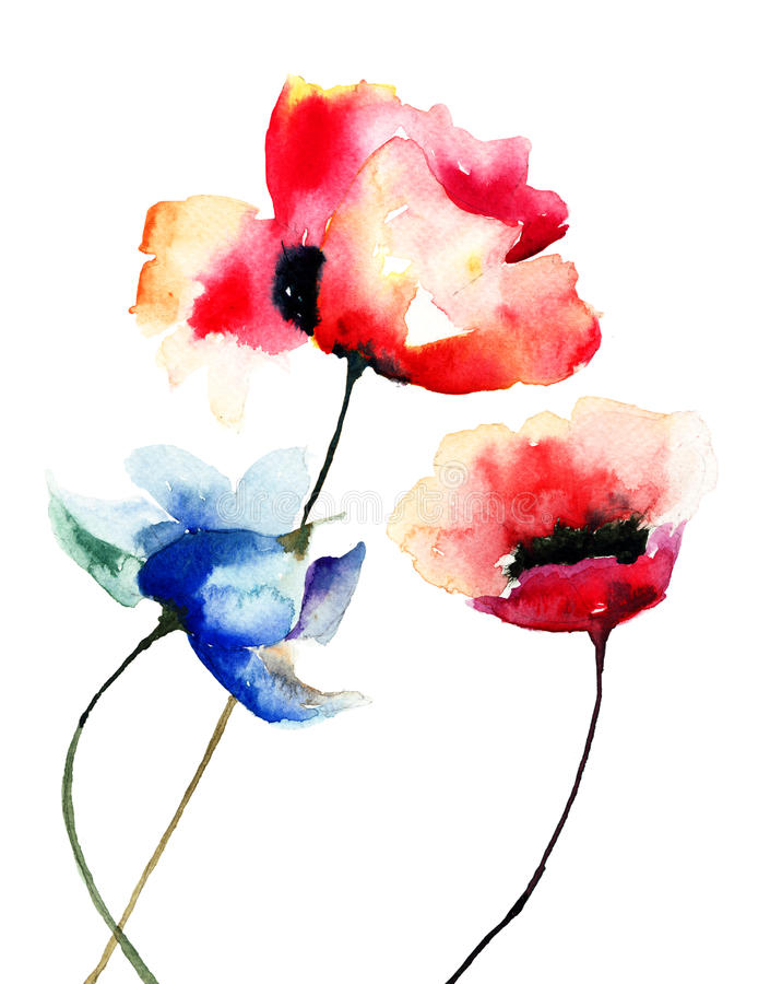 Papaverbloemen, waterverfillustratie stock illustratie