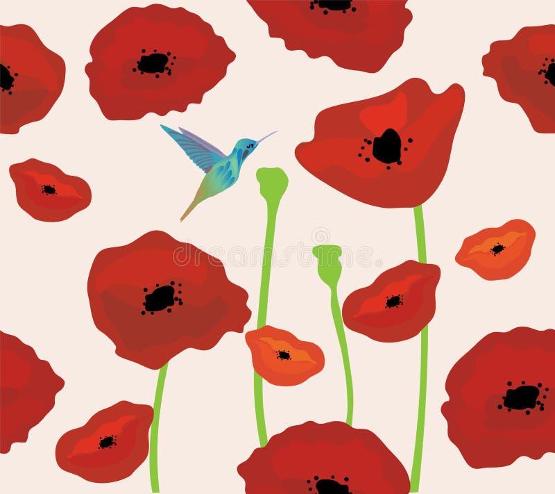 Papaveri dei colibrì di vettore royalty illustrazione gratis